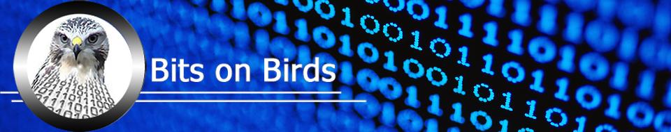 Bits on Birds